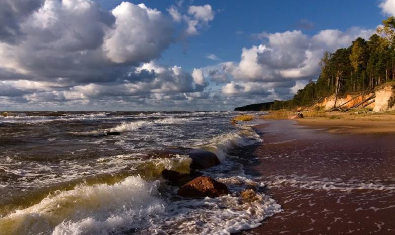 Позади Балтийское море