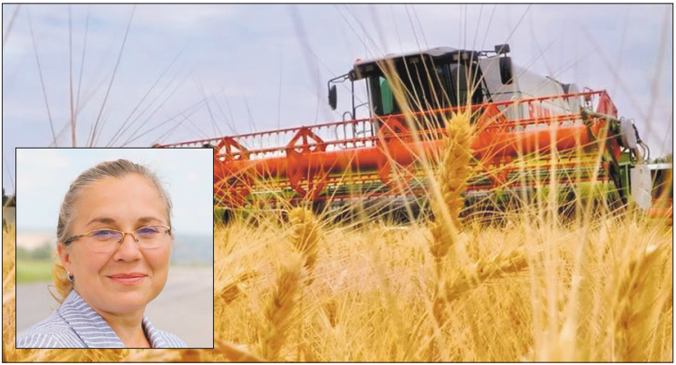 Наталья Демченко: «Фермерское дело – перспективное»