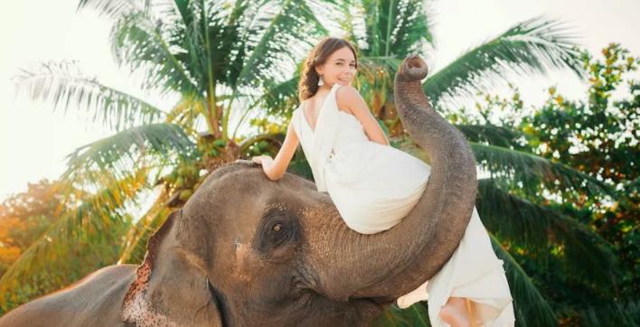Беременность как у слона